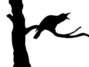 vector silhouette ravens on branch tree
